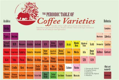 Café Arábica y café Robusta: Estas son las diferencias ...