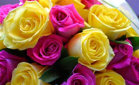 Caja de Rosas Esperanza   Regala Flores Hermosas