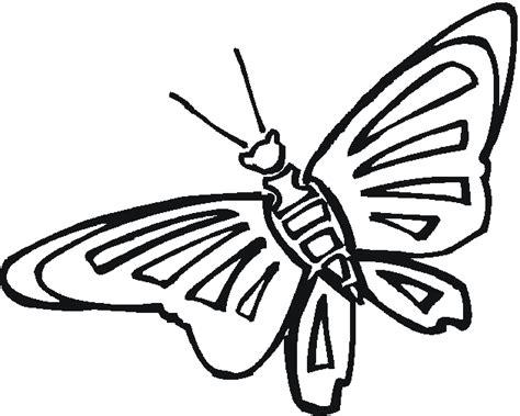 Calcar mariposas monarcas - Imagui