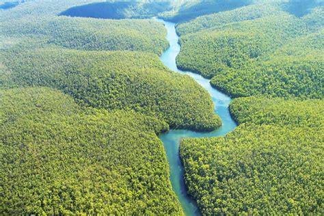 Camila Pitanga dá voz à Amazônia na campanha A Natureza ...