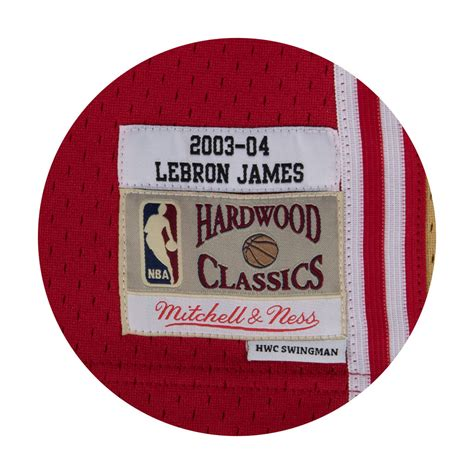 Camiseta Lebron James. Cleveland Cavaliers. Swingman ...