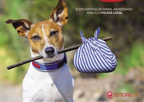 Campaña en la ciudad contra el abandono de perros en ...