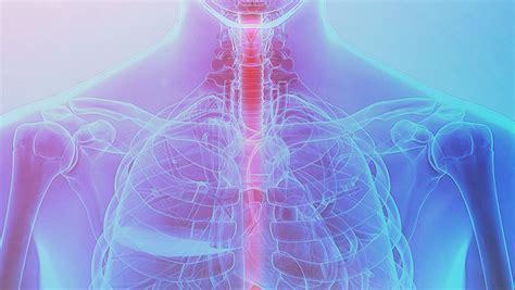 Câncer de esôfago tem 90% de cura se tiver diagnóstico ...