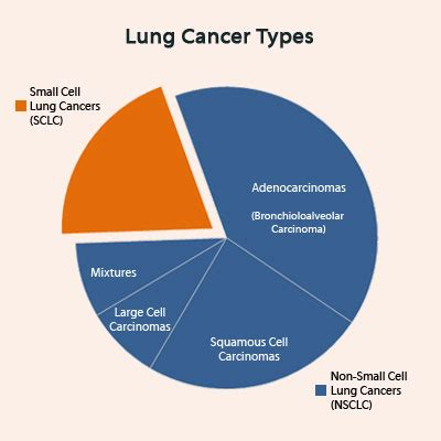 Cancer Types: Carcinoma Lung Cancer Types
