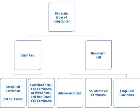 Cancer Types: Types Small Cell Lung Cancer