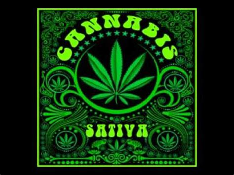 Cannabis Sativa Cartel de Santa   YouTube