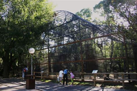 CAPTE Foros - Ver Tema - [Zoo Madrid] Recuerdos de otra ...