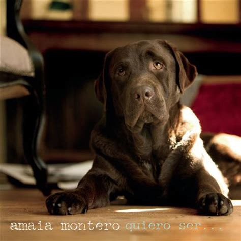 Carátula Frontal de Amaia Montero - Quiero Ser (Cd Single ...