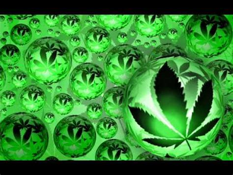 CARTEL DE SANTA MARIHUANA   YouTube