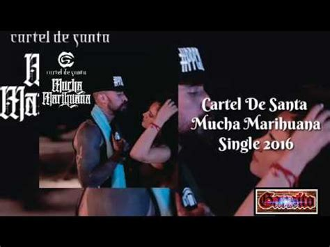 Cartel De Santa   Mucha Marihuana [Single 2016] [Link De ...