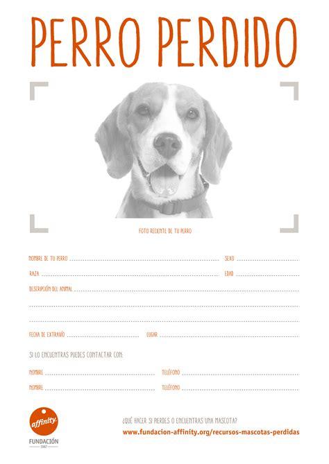 Cartel si has perdido tu perro  sin recompensa ...