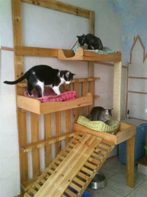 casas para gatos | MultiHogar Alicante