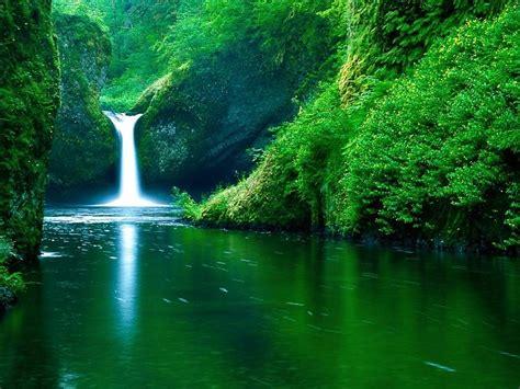 Cascada Verde Naturaleza Full HD Fondo de pantalla fondos ...