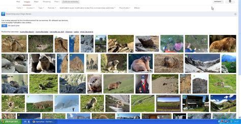 cdikernanec » Tutoriel :La recherche avancée de Google images