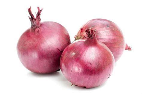 cebolla roja - Actitud Saludable