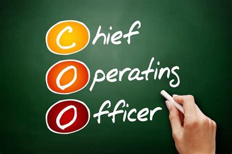 CEO, CFO, COO: entenda o significado e atribuições dos ...