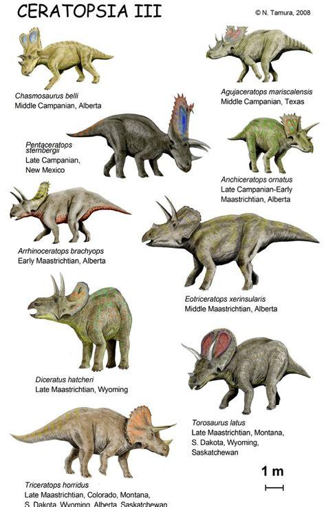 Ceratopsia III by ~NTamura on deviantART | Dinosaur ...