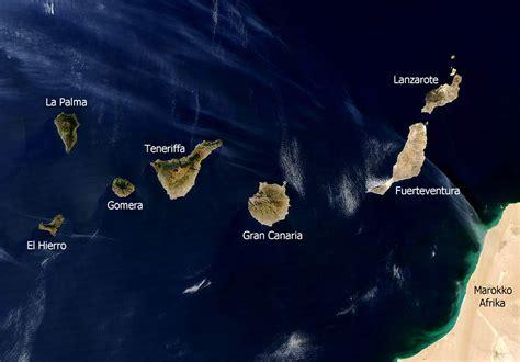 Cetáceos de Canarias