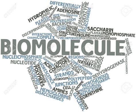 CHAPTER 9 – BIOMOLECULES – Biology for medical entrance exams
