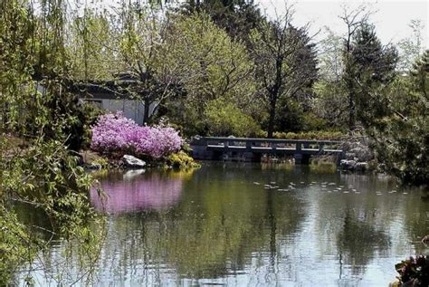 Chinese Garden | Space for life