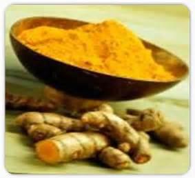 Chinese Herb Curcumae is Cardio Protective