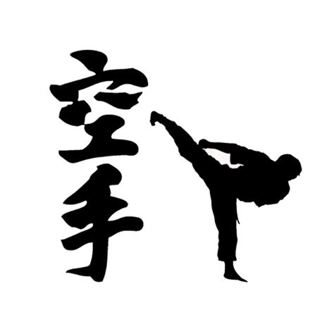 Chinese Karate Reviews - Online Shopping Chinese Karate ...