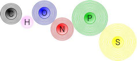 CHONPS – Wikipédia, a enciclopédia livre