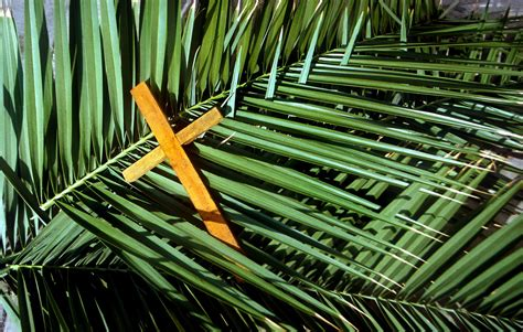 Christians mark Palm Sunday   Northern KZN Courier