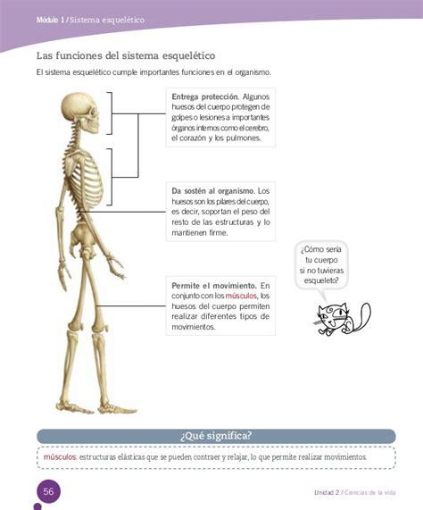 Ciencias 4° santillana