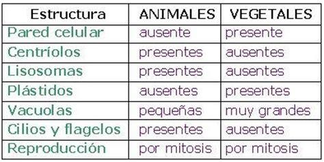 CIENCIAS BIOLOGICAS: CELULAS EUCARIOTAS