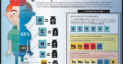 Ciencias en el CIC: TEMA 1 BIOELEMENTOS, BIOMOLÉCULAS ...