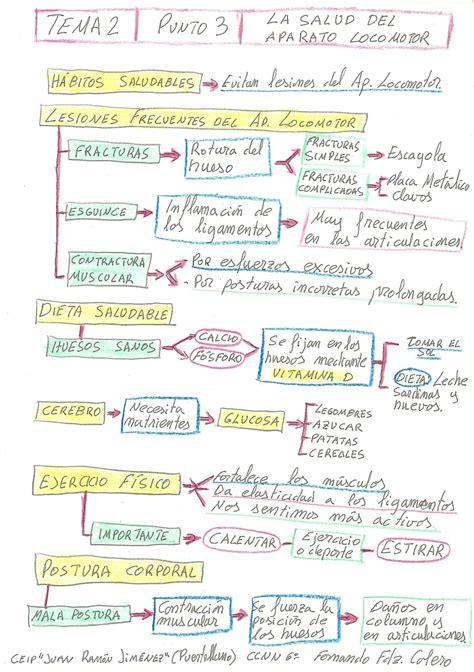 Ciencias Naturales 6º - CEIP