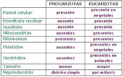 Ciencias Naturales: Célula Eucariota y Procariota