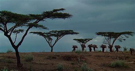 Cine para viajar: Memorias de África – La Próxima Parada