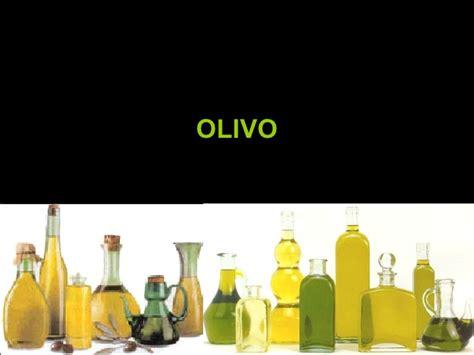 Clase 4 ElaboracióN De Aceite De Oliva