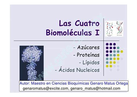 Clase 4 Las BiomoléCulas (Azúcares Y Proteínas)
