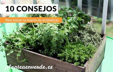 Clases De Plantas De Interior. Cool With Clases De Plantas ...