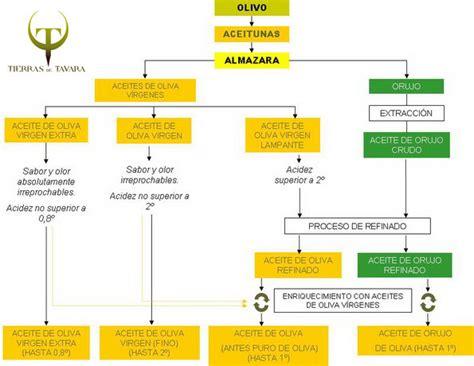 Clasificación de los Aceites de Oliva - Tienda