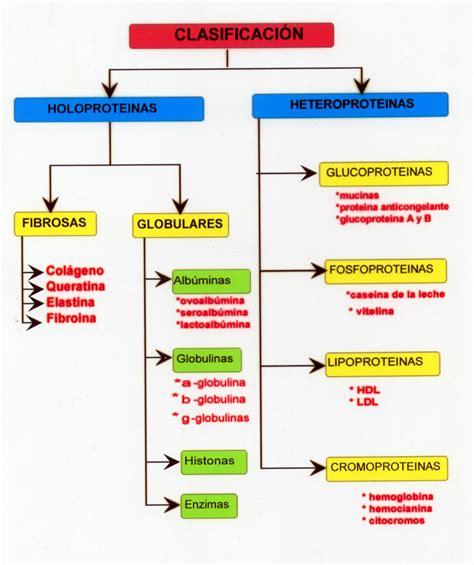 Clasificación y estructuras de las proteínas - 214 ...