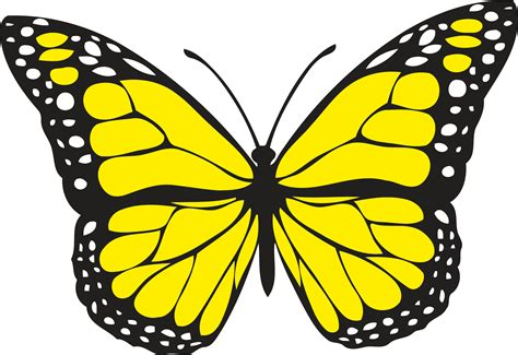Clipart - Butterfly 1 (colour)