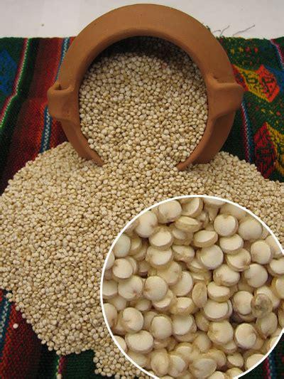 Club Gourmet de Bolivia: Quinua, el grano sagrado de los Incas