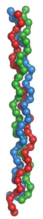 Colágeno marino con magnesio en comprimidos   Endofarma