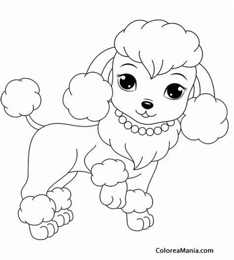 Colorear Perrita caniche  Animales Domsticos , dibujo para ...