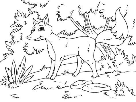 Colorear Zorro   Dibujos de Animales del bosque para ...