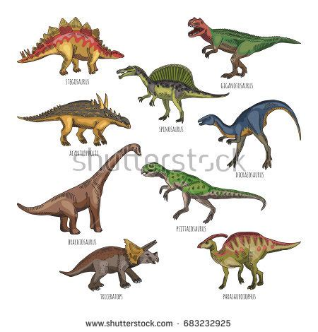 Colored Illustrations Different Dinosaurs Types ...