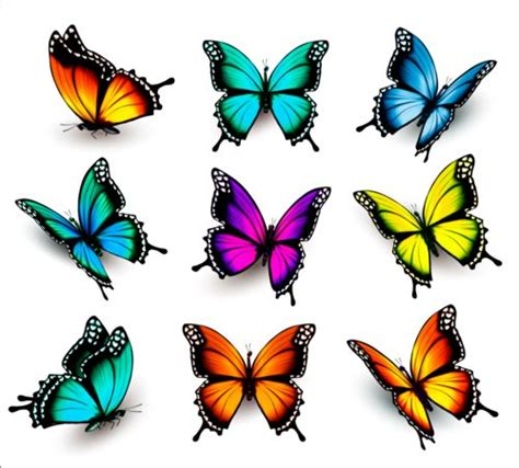 Colorful butterflies illustration vector collection 13 ...