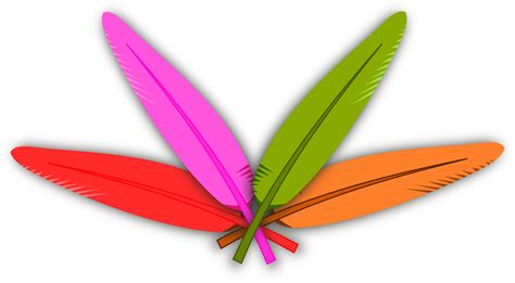 Colorful Feather Clip Art – Cliparts