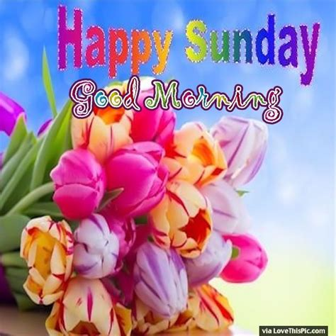 Colorful Sunday Good Morning Flowers | Quotes | Good ...