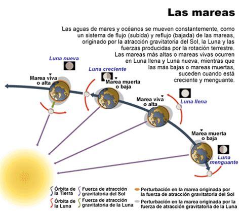 Como afectan las mareas en el surf - Quemalavida.com