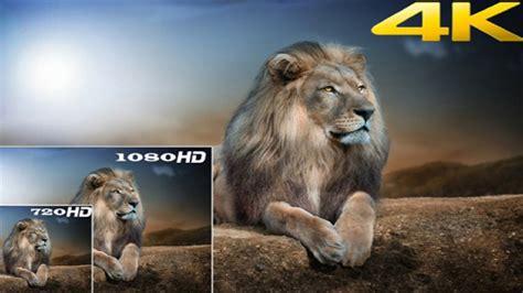 COMO BAIXAR FILMES EM Full HD ULTRA HD OU 4K GRATIS - YouTube